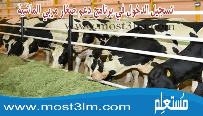 تسجيل الدخول في برنامج دعم صغار مربي الماشية